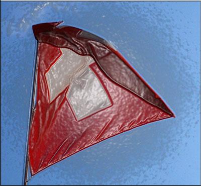 Švicarska zastava - obrada