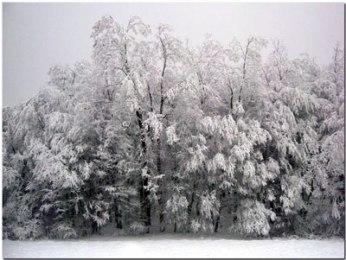 Medvednica zimi
