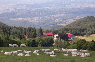 Pogled na Zagorje, HRvatska