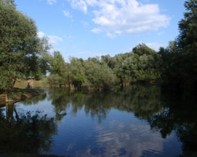 Jarunsko jezero