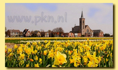 Protestantska Crkva Nizozemske